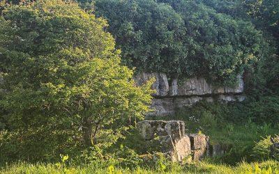 Tobar Chiaráin( St Ciaráin's Well)