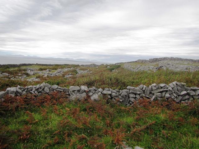 Scrub Clearance – Before and After Glanadh Scrobarnaí – Roimh & Taréis